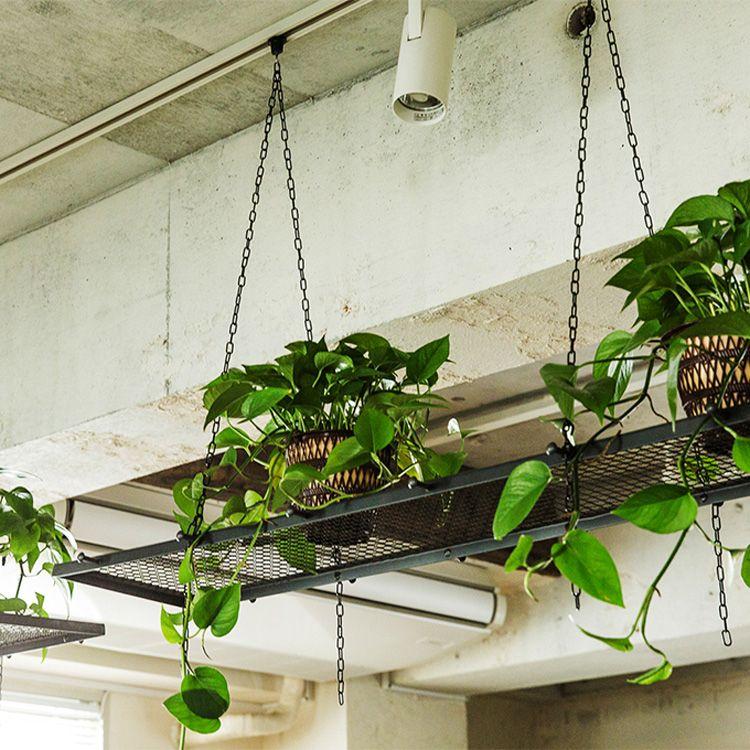 クララ 吊り棚 Clara Hanging Shelf 15177 吊り棚 壁掛け棚 収納