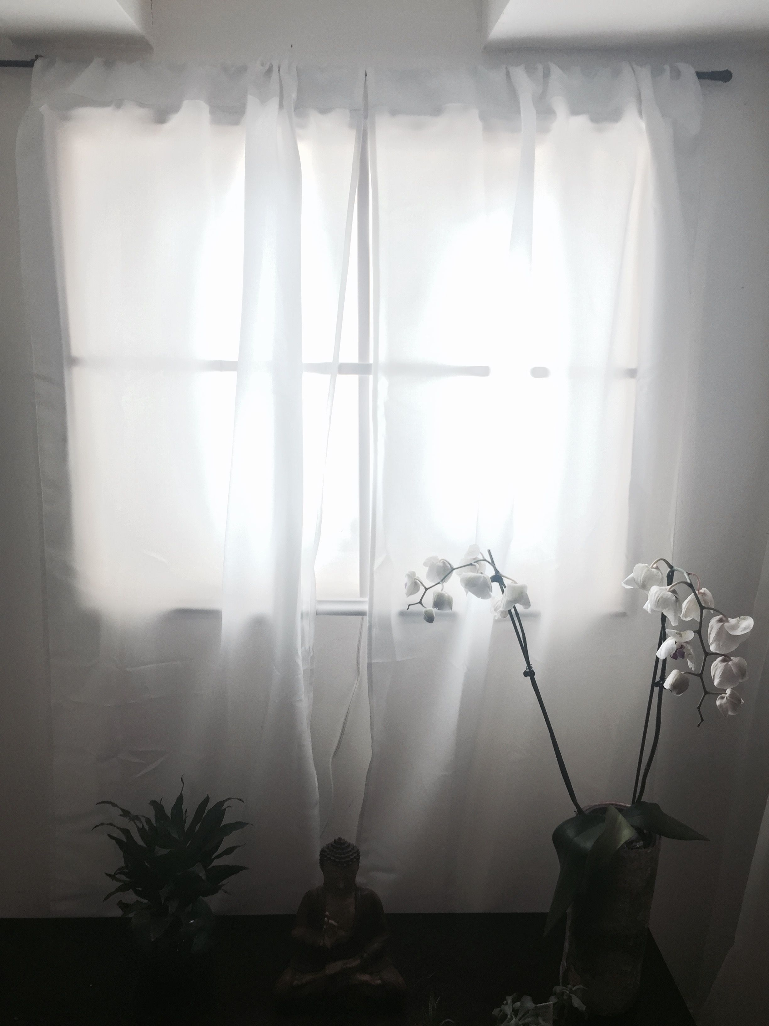 Fake window in our basement with led plant grow lights album on imgur