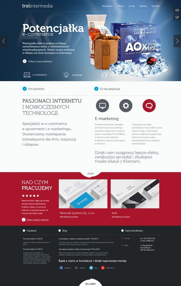 Trol Intermedia Interactive Agency And Internet Software House Webdesign Inspiration Www Niceone Web Design Web Design Inspiration Website Design Inspiration