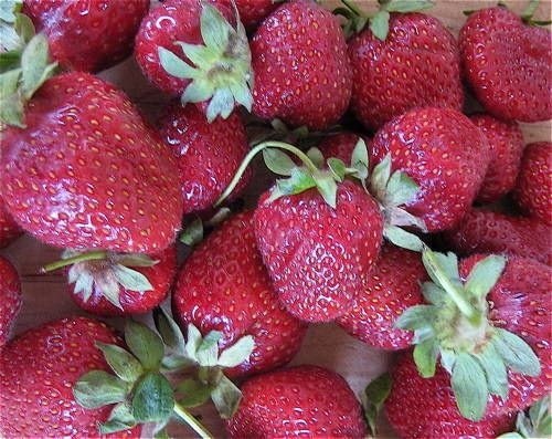How to buy, and store strawberries. Do they ripen off the vine?