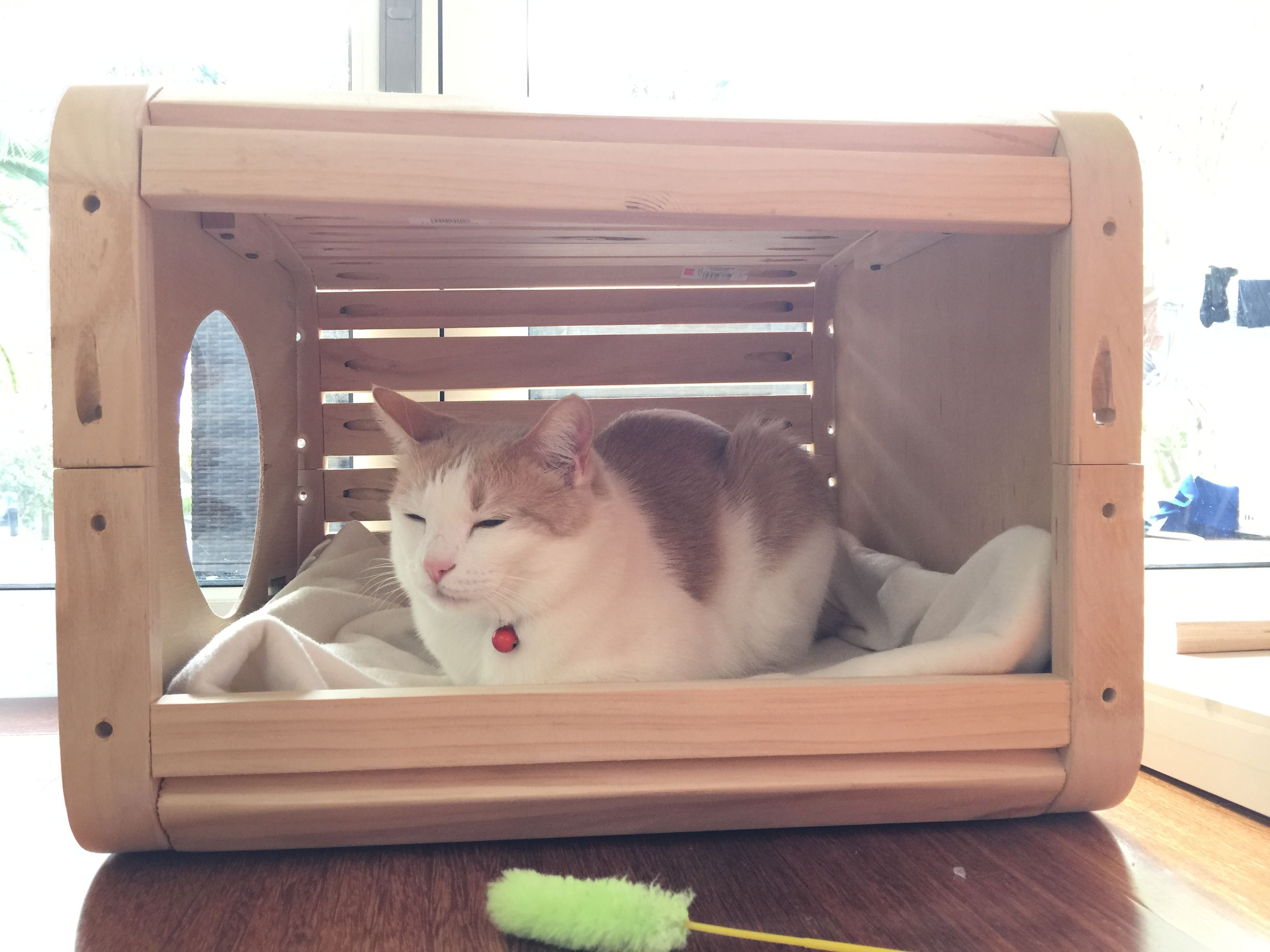 Cat Cubby House Diy Edition Handmade Crafts Howto Diy Cubbies Cubby Houses Diy