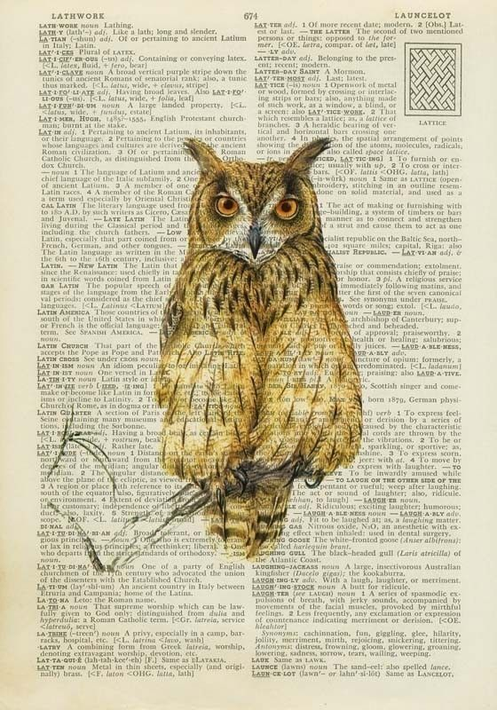 Vintage Owl Painting Owl Artwork Owl Art Owl Print