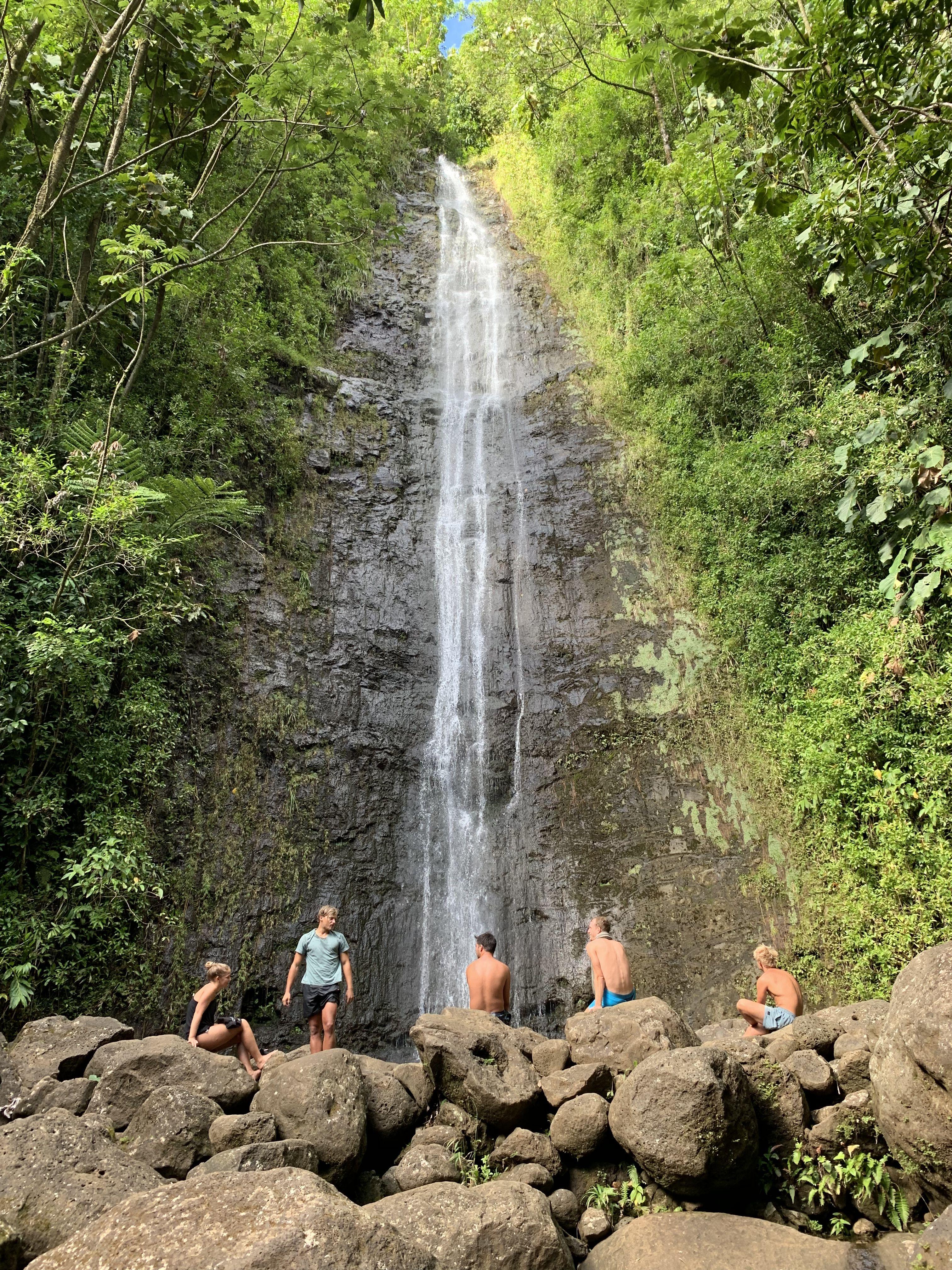 Jurassic Park Waterfall Manoa Falls Hike Adventure Waterfall Country Roads