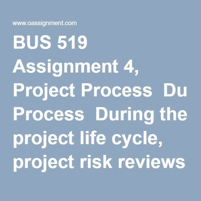 Bus  Assignment  Project Process During The Project Life