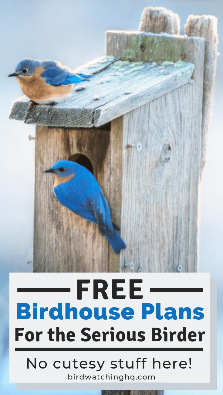 1e67a12504b63016da02373608578e2e - Better Homes And Gardens Bird House