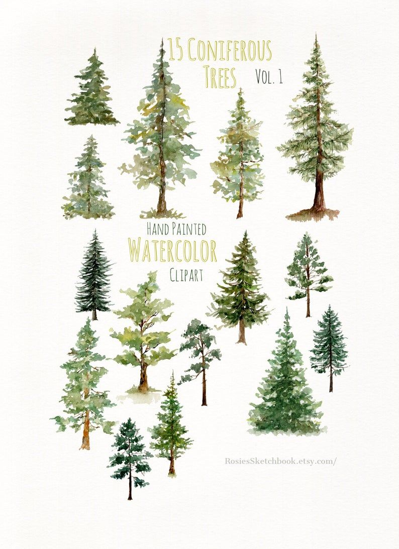 Pine Tree Art Print Wall Decor Watercolor Painting Tree