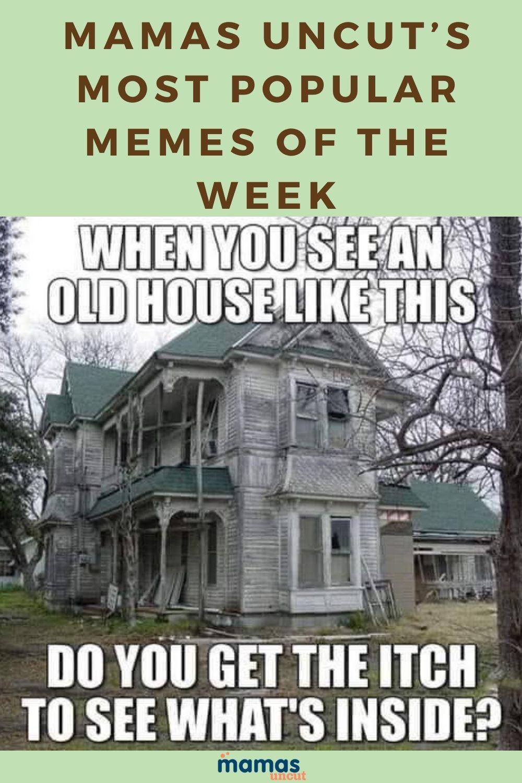 35 Spectacular Top Memes Of The Week From Mamas Uncut Parenting Humor Most Popular Memes Mom Humor