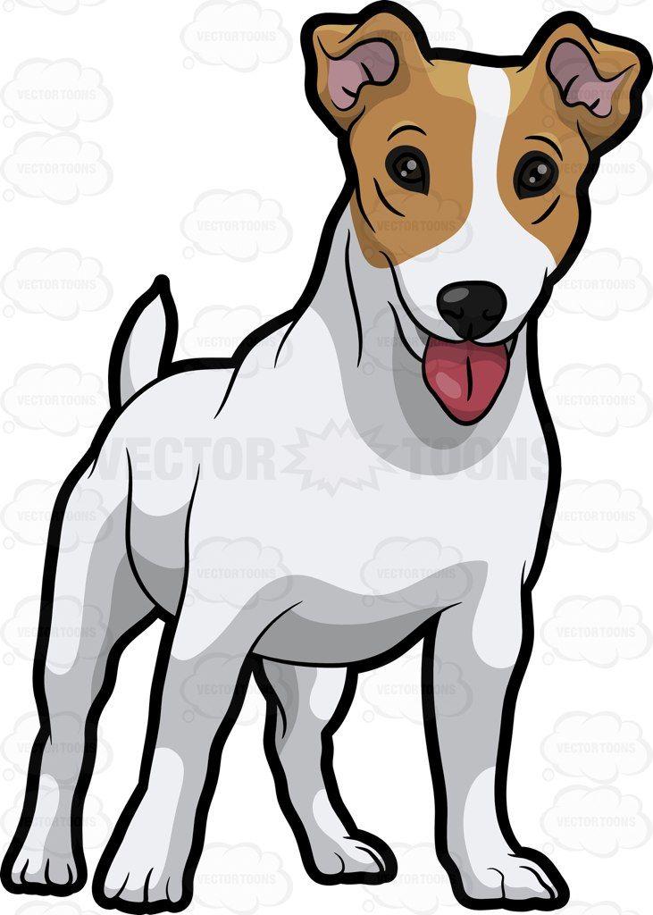 A Friendly Jack Russell Terrier Puppy   Arte
