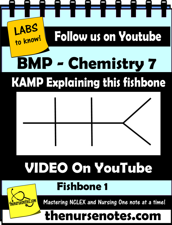 BMP Chemistry 7 What is the BMP or Chem 7 or Chemistry Fishbone Diagram explaining labs -Blood Book Hyponatremia Sodium Lab Value Blood Hyponatremia Mnemonic Nursing Student This is the second video explaining the basics of the BMP Fishbone diagram explaining the Hyperkalemia Hypokalemia, Na K Cr Hypomagnesemia BUN Creatinine Addisons Dehydration Study Sheets for Nurses NCLEX Tips The Nursing Notes KAMP Nursing-