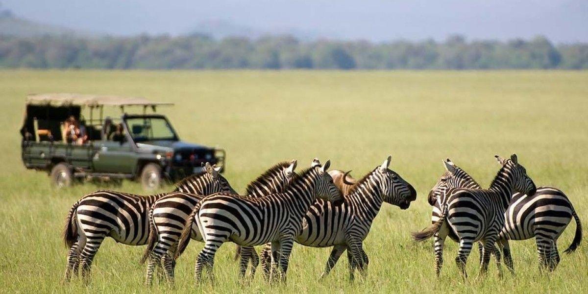 Safari Lodge Kenya Campi Ya Kanzi Kenya Eco Lodge Safari Lodge