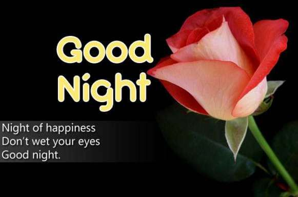 Good Night Images Free Download Good Night Wallpaper Good Night Image Good Night Wishes