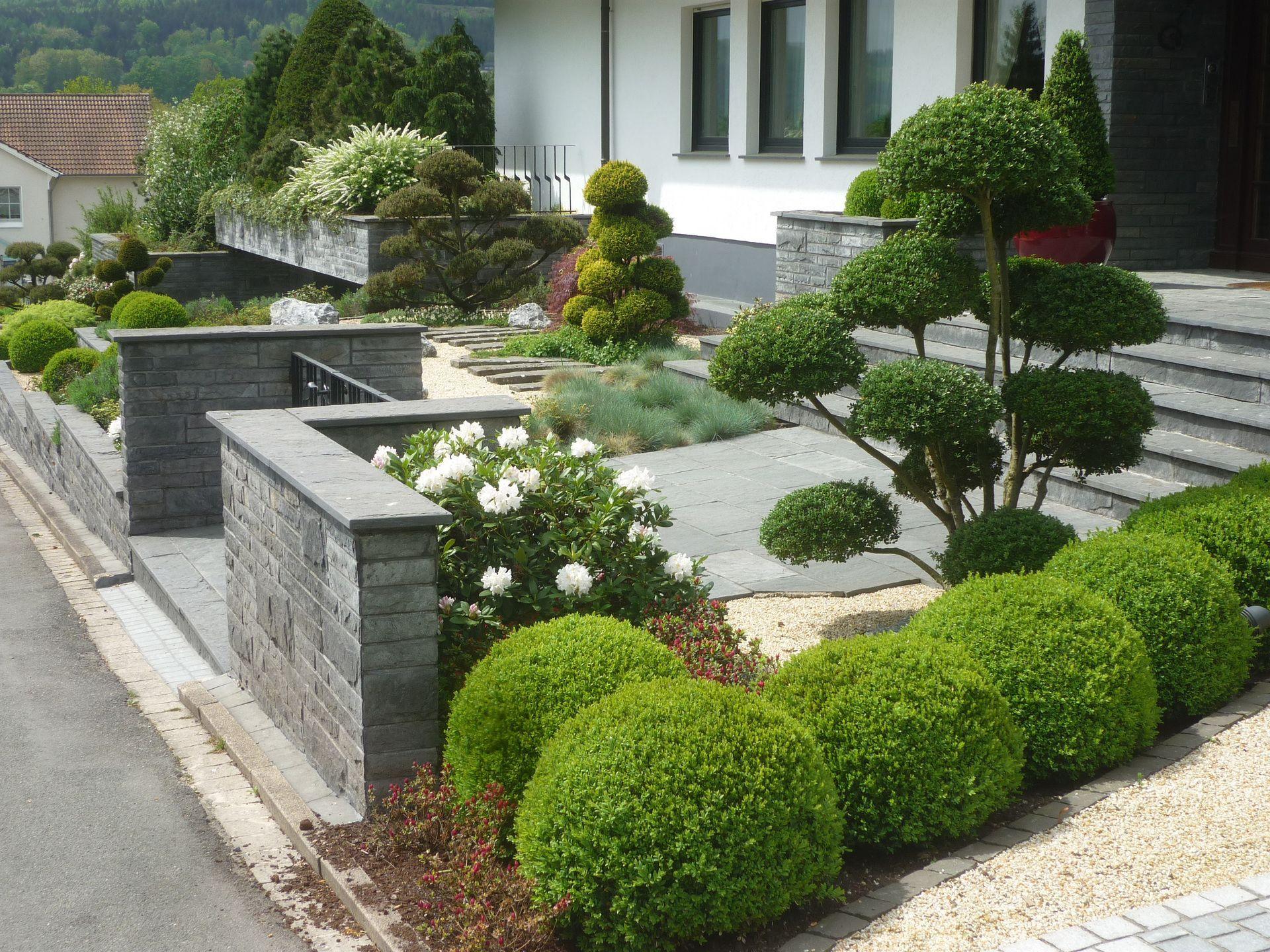 der vorgarten bl hend sch n und pflegeleicht vorgarten garten garten. Black Bedroom Furniture Sets. Home Design Ideas