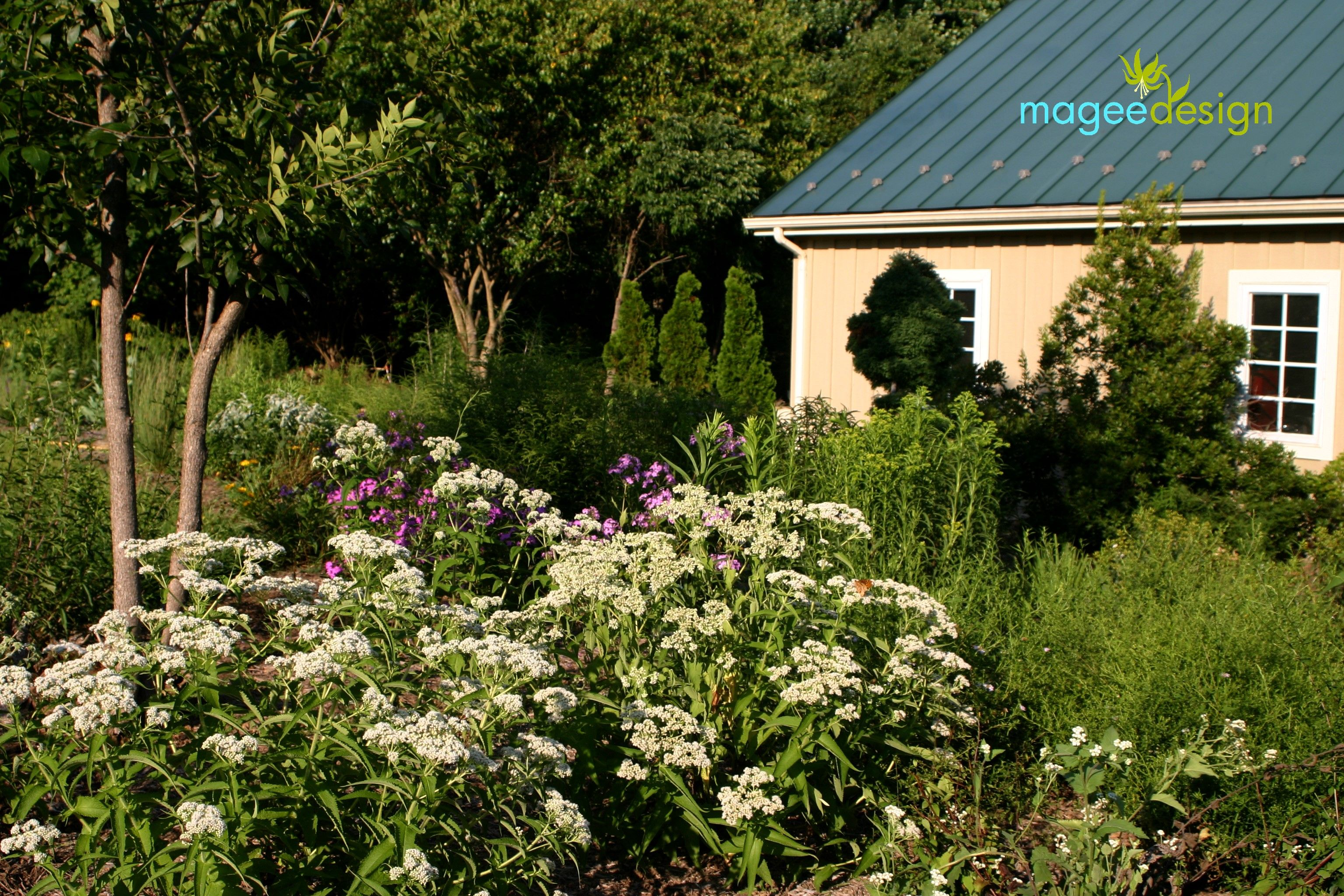 Native plant garden designed by Magee Design at an animal rescue