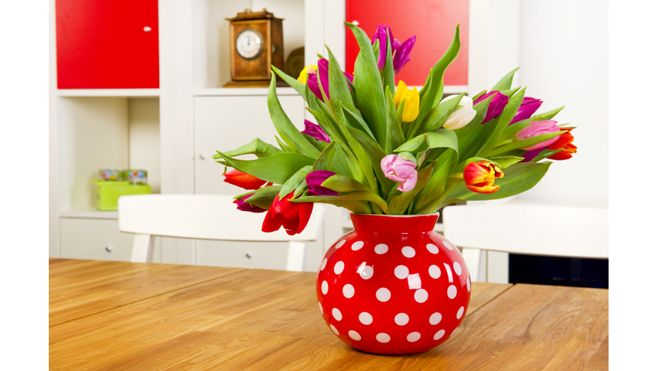 Spring  http://www.foxnews.com/leisure/2013/03/24/five-things-can-do-to-bring-spring-into-your-house/