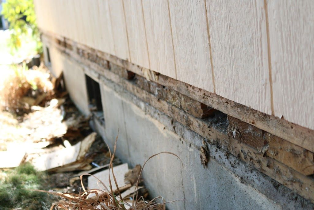 How To Replace Rotted T1 11 Lp Siding With A Belly Band Brian Hensley Lp Siding Wood Siding Siding