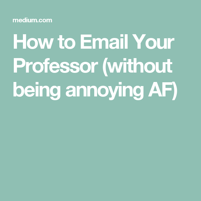 How to Email Your Professor (without being annoying AF ...