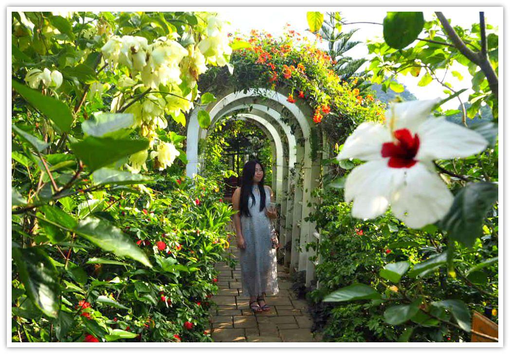 Terrazas De Flores Has Flower Arches That Heighten The Beauty Of Flowers Seemingly Putting Them On A Pedestal Flower Beauty Famous Gardens Botanical Gardens