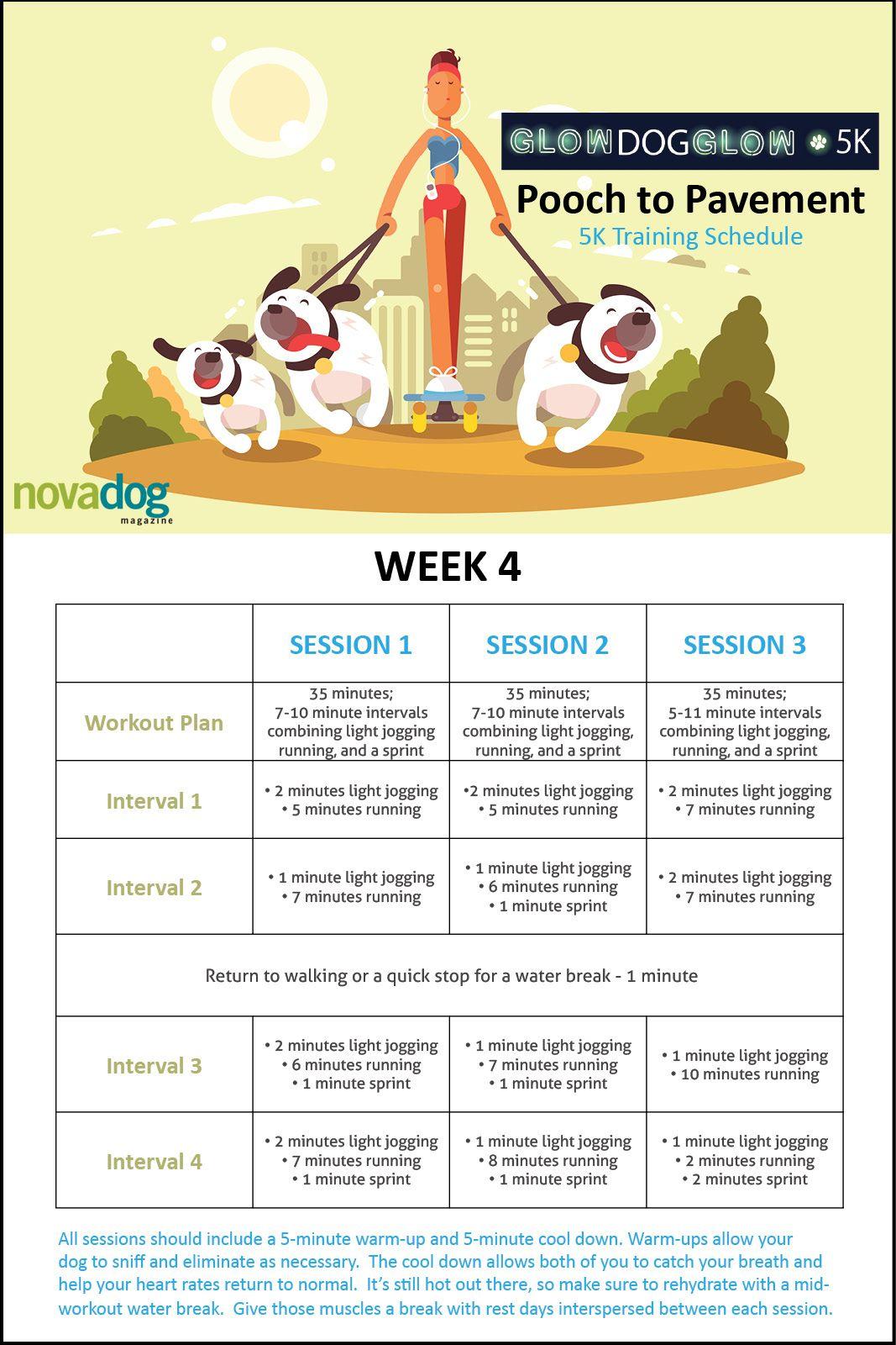 Pooch To Pavement 5k Training Schedule Week 4 5k Training