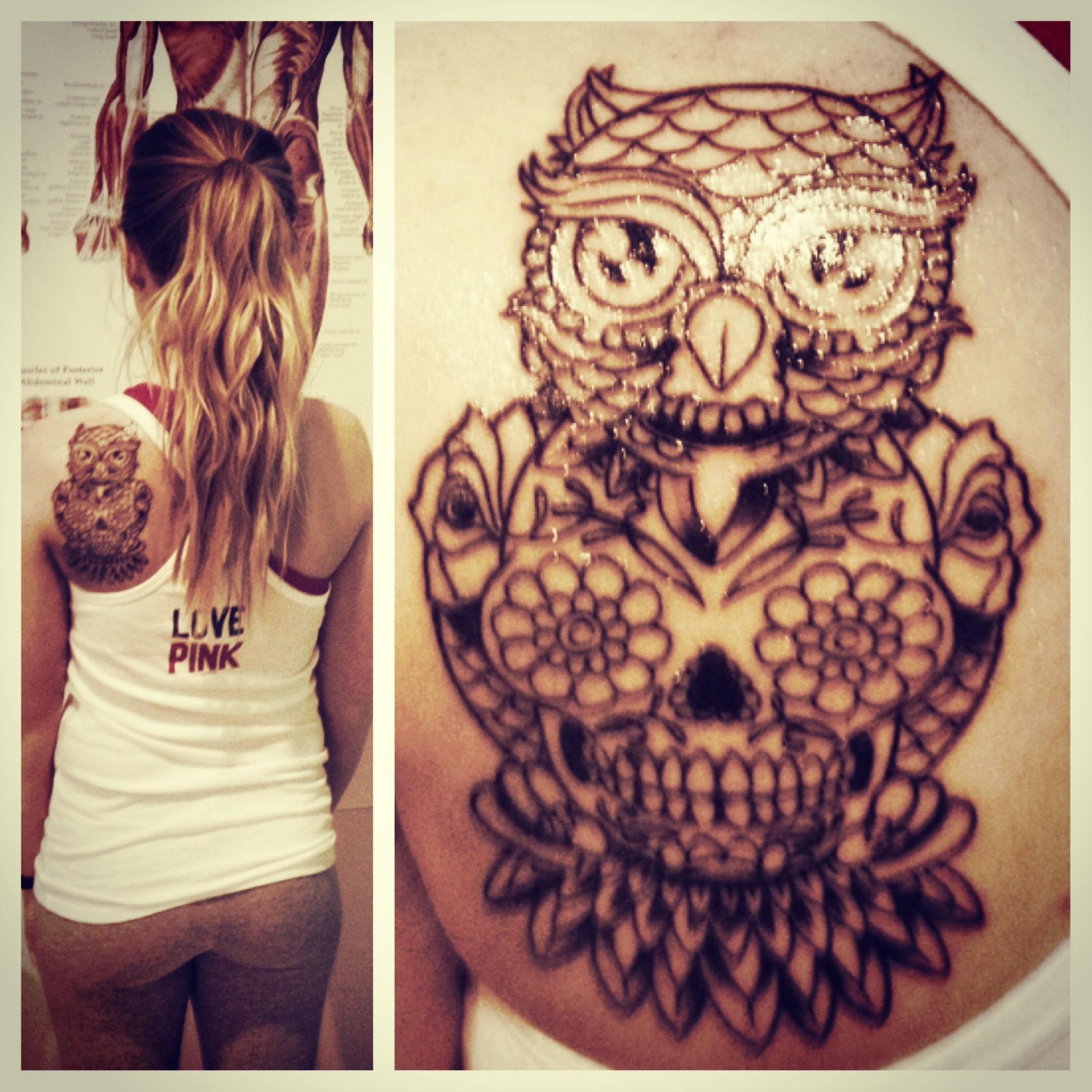 Owl with sugar skull piercings and tattoos pinterest for Owl and sugar skull tattoo