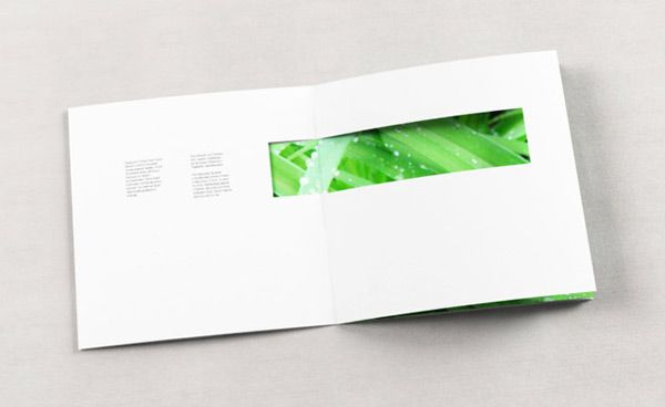 1000 images about brochure booklets editorial on pinterest