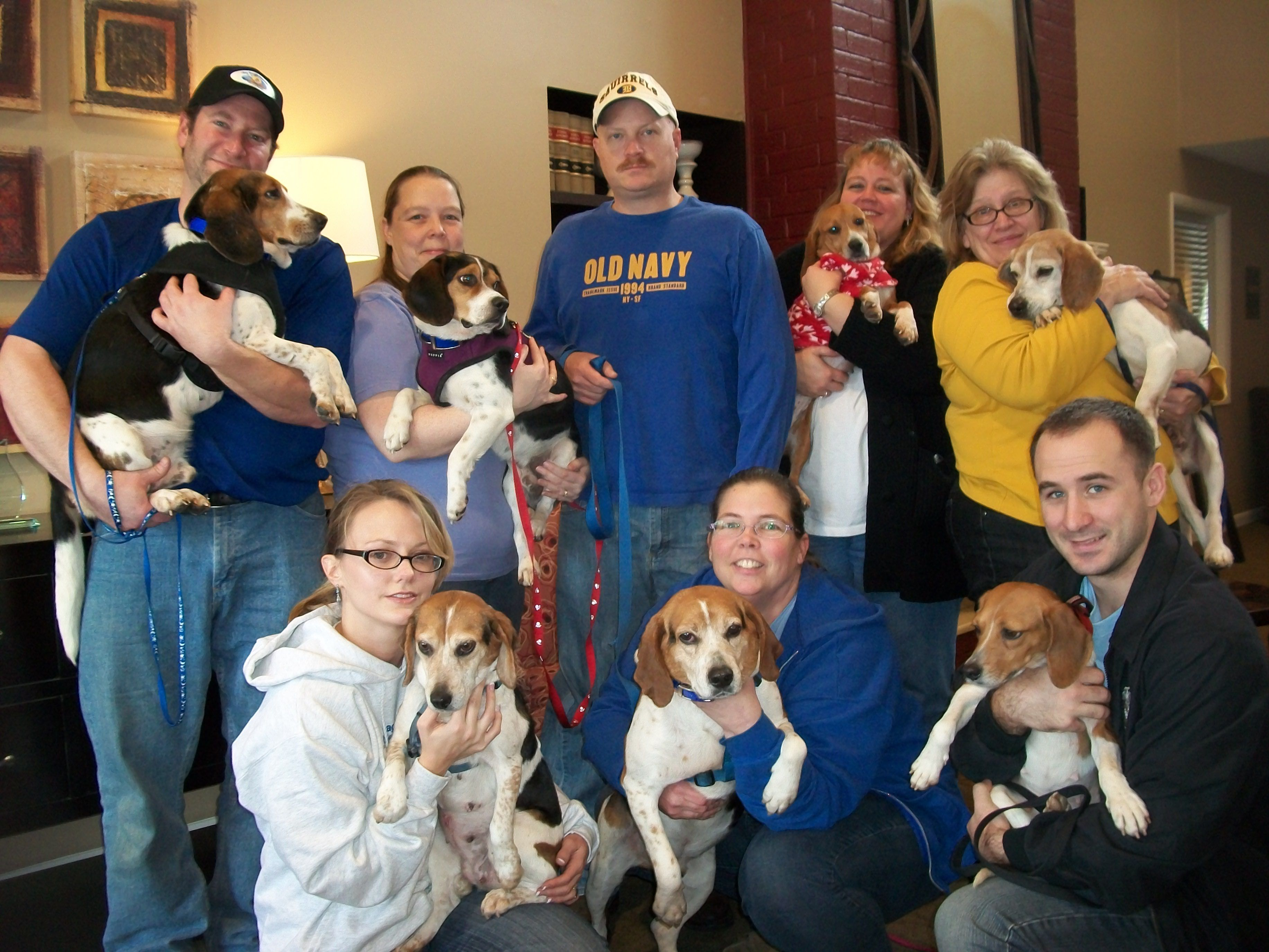 Our Volunteers At An Adoption Event Beagle Rescue Adoption In Virginia Beagle