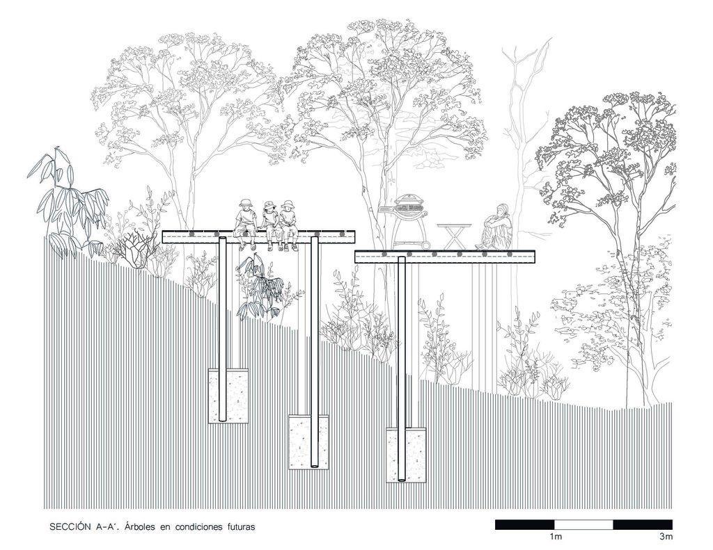 Proyecto construido - Plataformas en el bosque