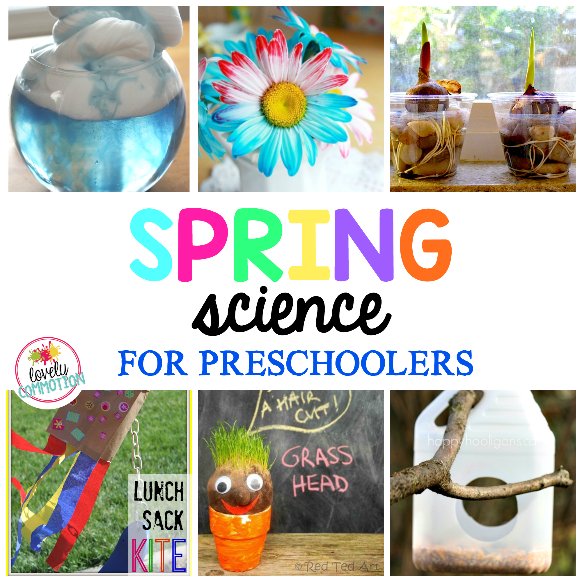Find Some Great Spring Science Ideas And Activities For