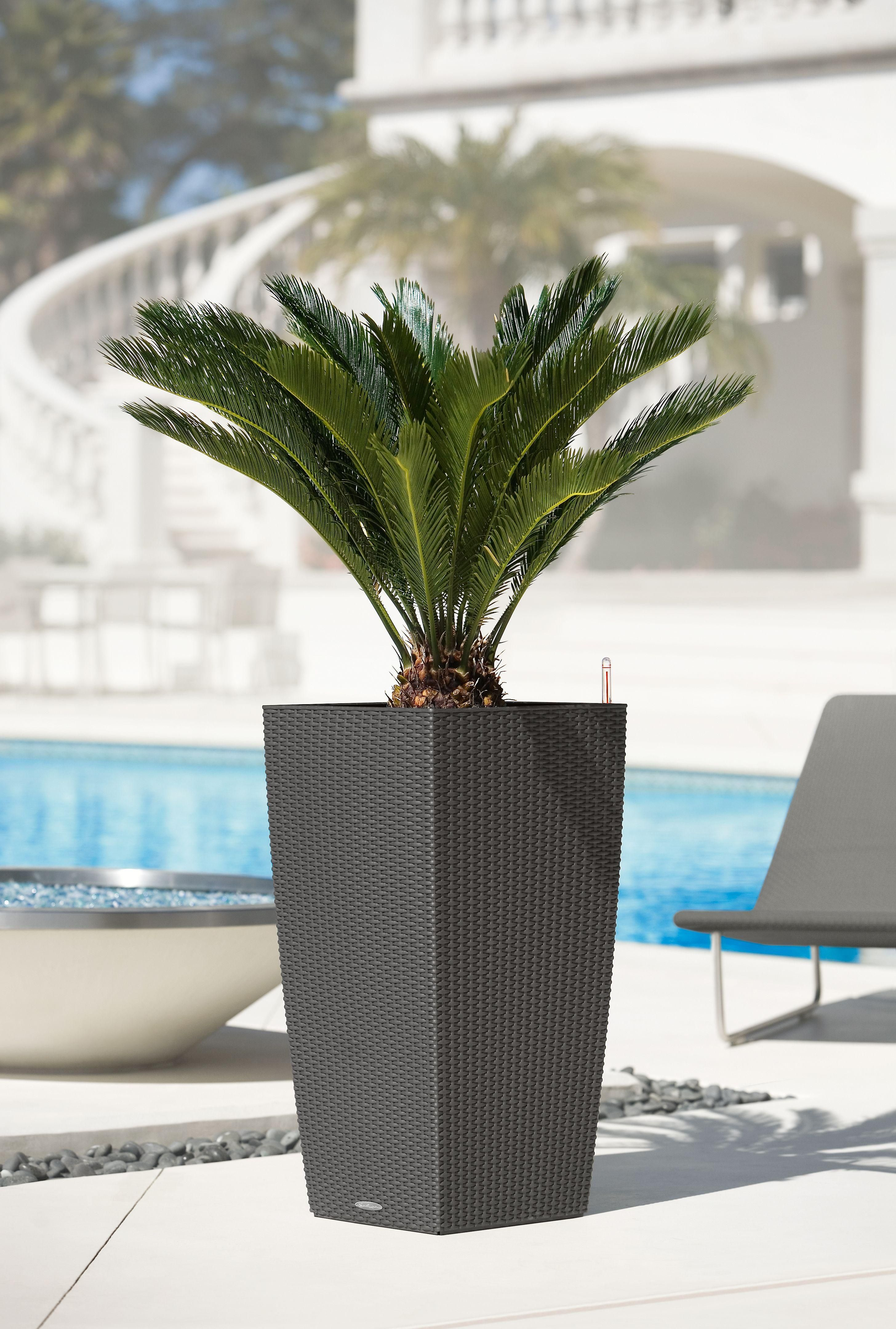 Lechuza cubico cottage 30 planter granite wicker tall planters balcony planters large outdoor