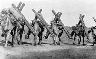 Ivan's adventures: Afghan cameleers | Outback australia, Work in ...