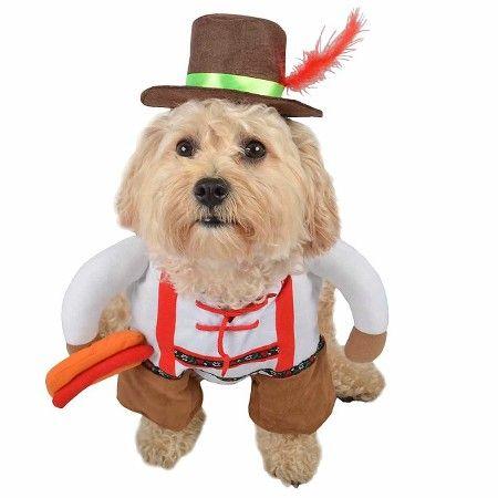 Oct Brat Pet costume  Target  sc 1 st  Pinterest & Oct Brat Pet costume : Target | Pet Costumes | Pinterest | Pet costumes