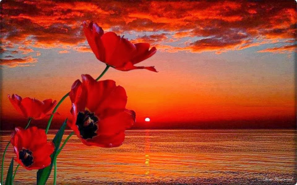 اجمل لحظات غروب الشمس حول العالم Nature Photography Beautiful Sunset Nature