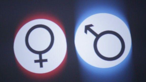 Copernicus Festival – Małe rewolucje 2014 » Płeć zawdzięczamy pasożytom