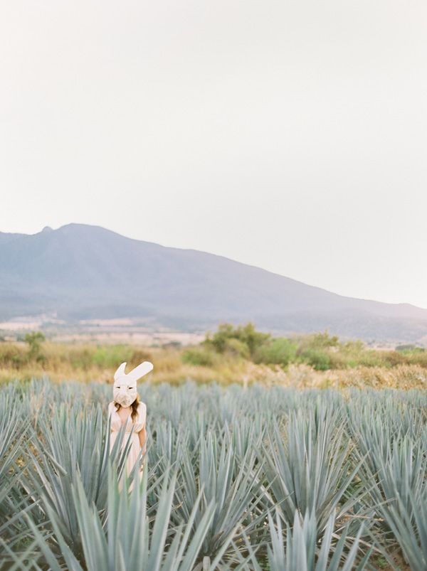 Tequila, Mexico shoot for Oncewed « Jose Villa   Fine Art Weddings