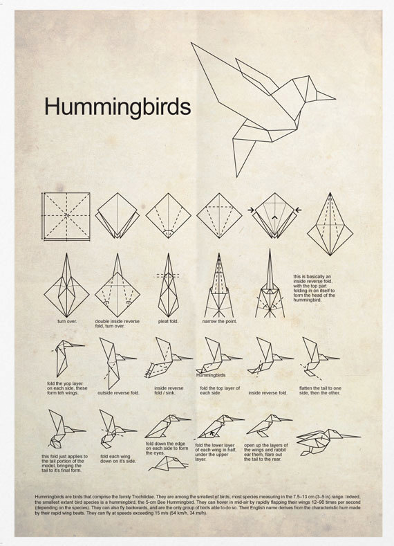 origami hummingbird diagram instructions draw a simple of the rock cycle poster print products pinterest