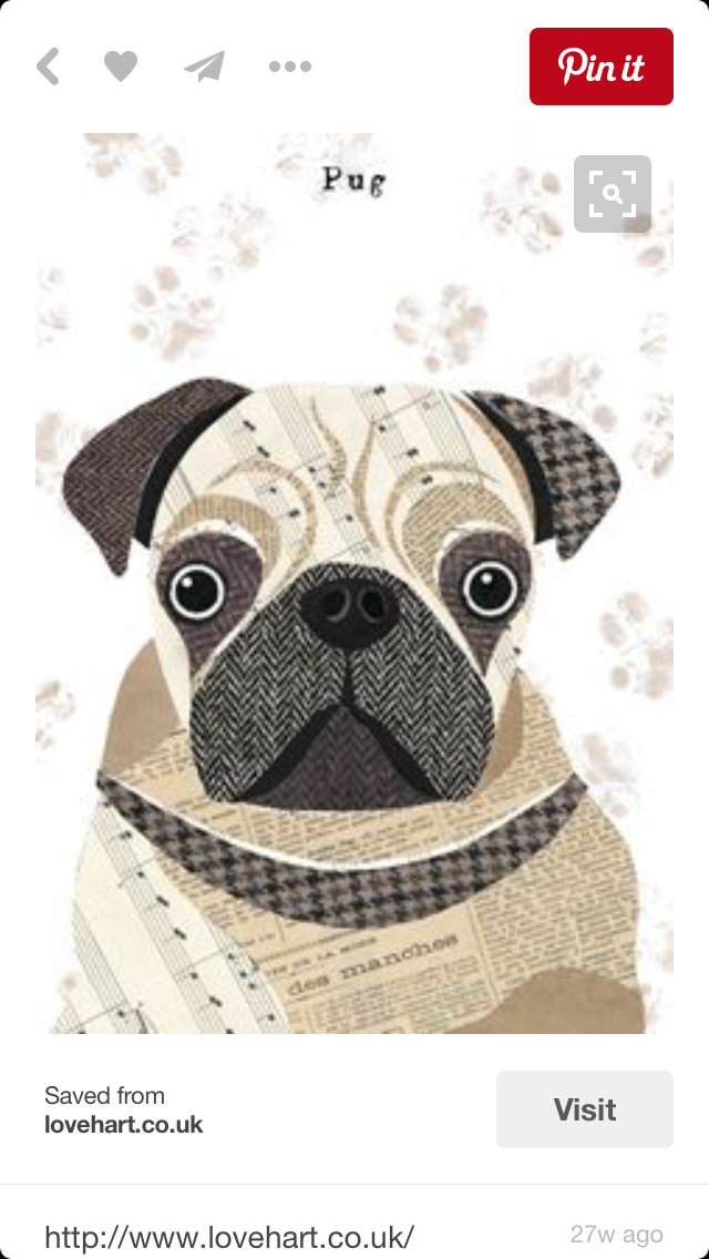 Pin de Sandy Milner en Applique | Pinterest | Animales imagenes ...