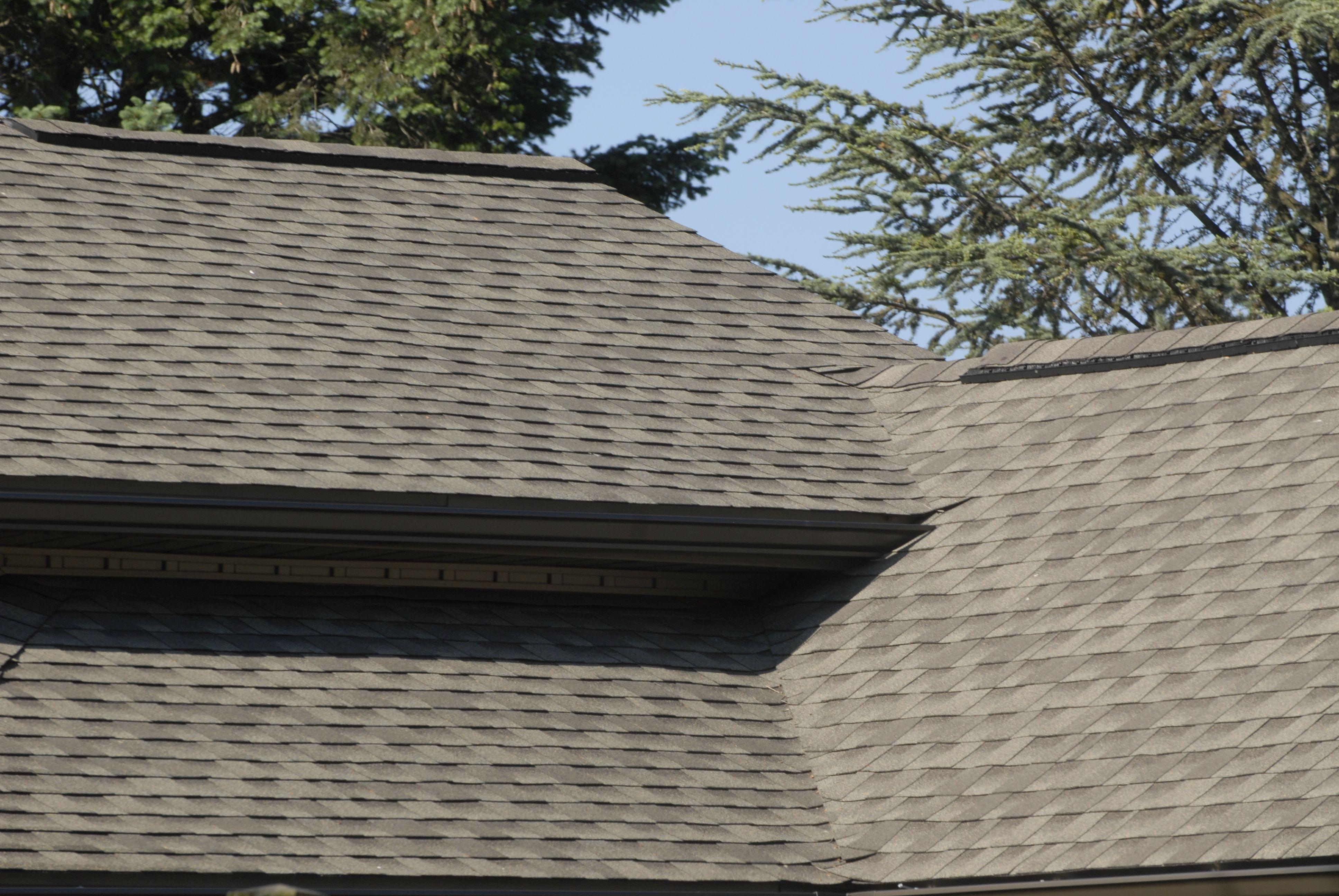 Gaf Timberline Hd Lifetime Shingles Roof Shingles Shingling Roofing