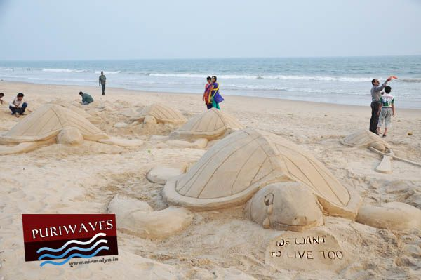 The reputed renowned sand artist and sand animator Mr. Manas Kumar Sahoo has created sand art to keep people to be aware for saving Olive Ridley tortoise. Description from puriwaves.nirmalya.in. I searched for this on bing.com/images