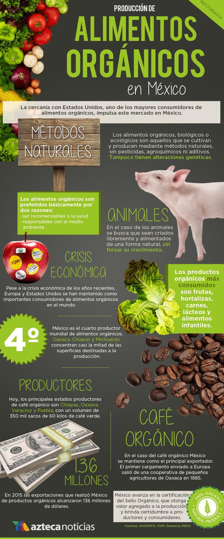 Produccion De Alimentos Organicos En Mexico Infografia Alimentos Organicos Alimentos Comida Sana
