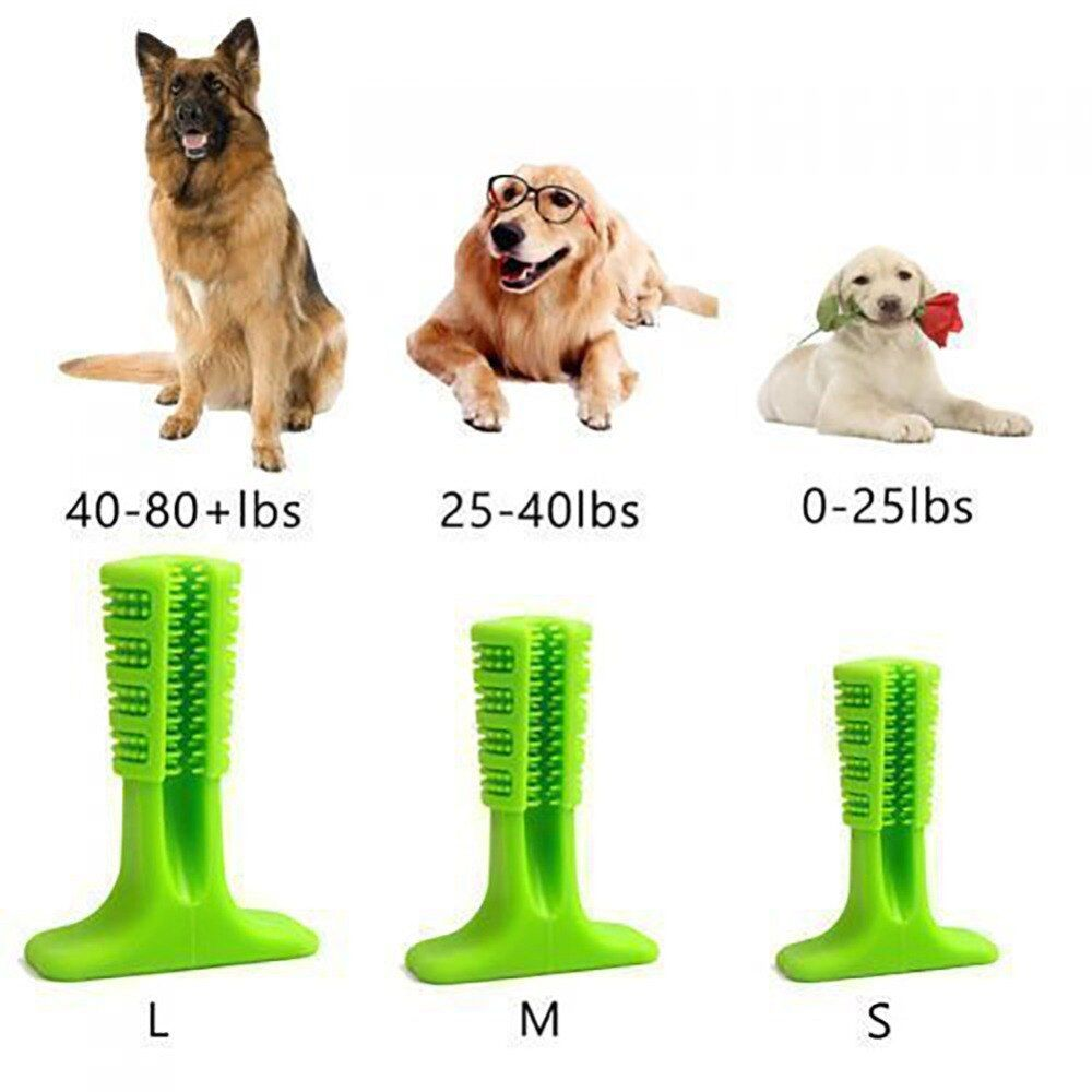 Dog bristle tooth cleaning toy dog toothbrush best dogs