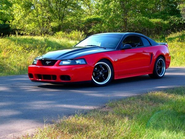 Pin By Dave Cat On Ford 4 Life Pinterest Mustang Mustang 2000