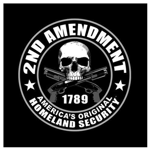 "Guns skull Sticker tactical Window Bumper Decal skeleton weapons evil 7""X8"""