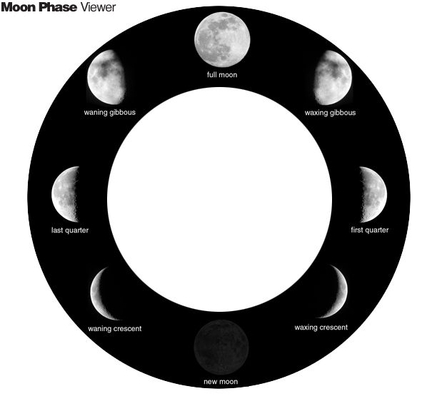 E is for Explore Moon Viewer 10 Day Moon drawing worksheet video – Oreo Moon Phases Worksheet