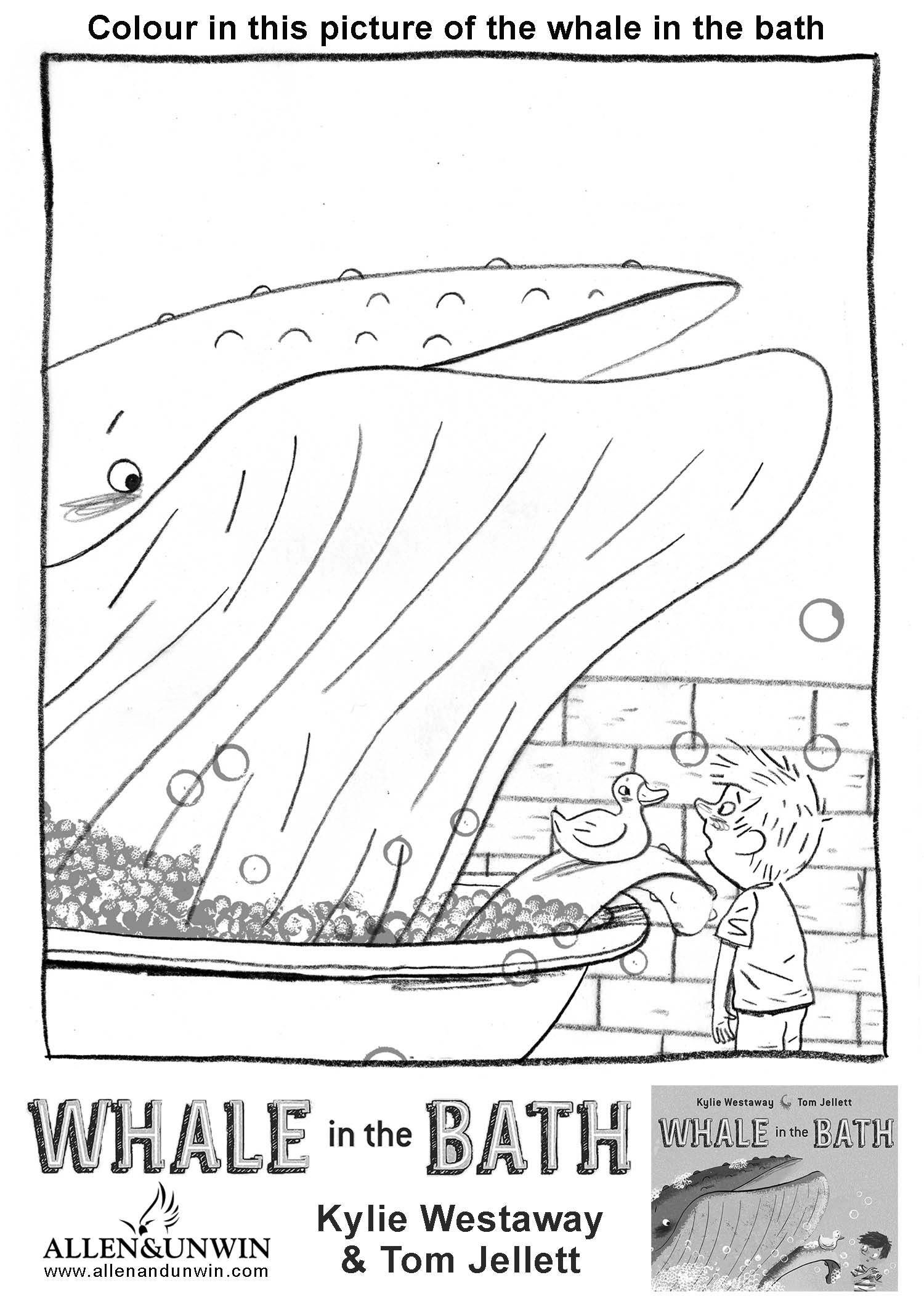 Whale In The Bath Teaching Notes