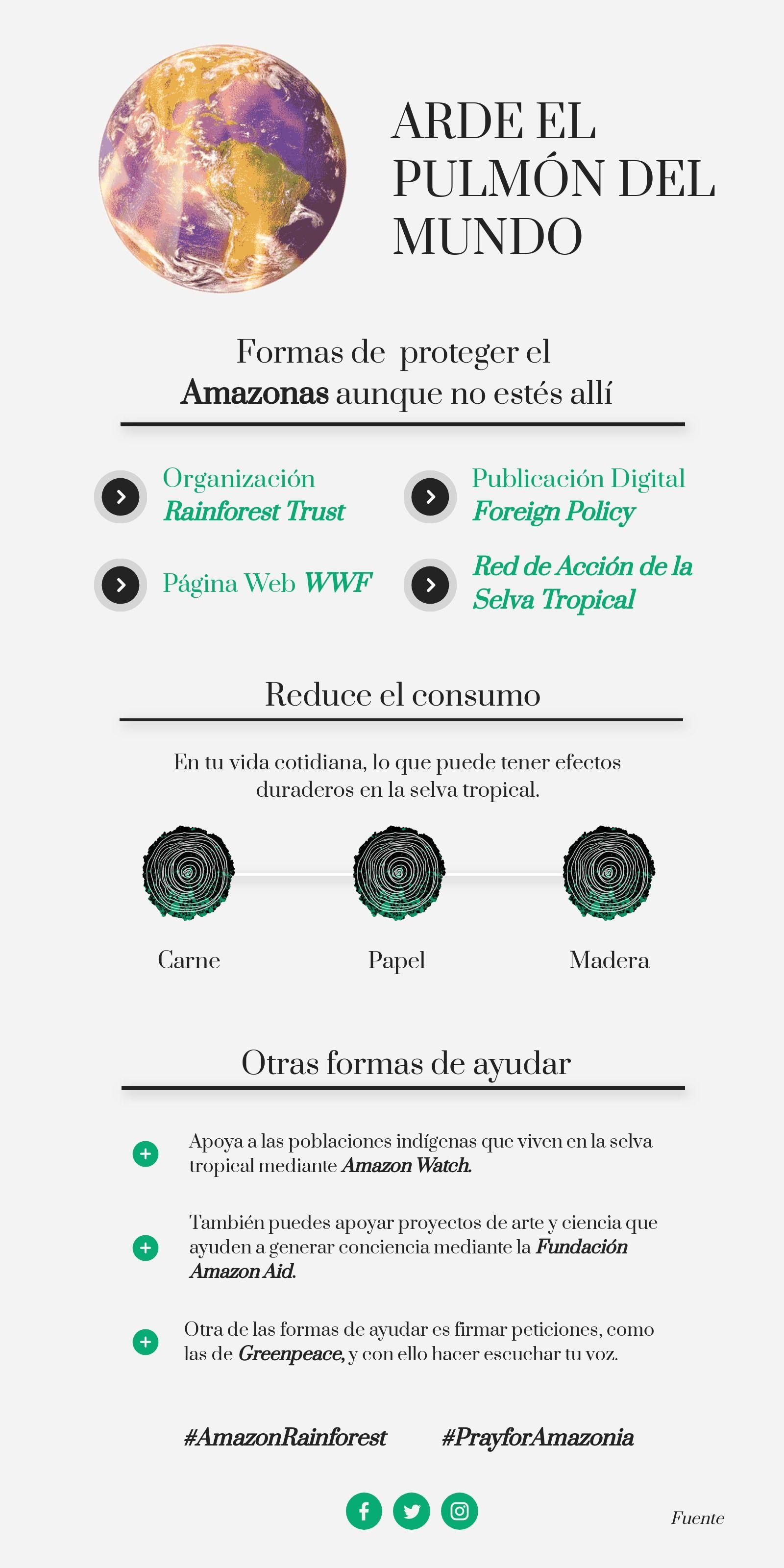 Infografía Protege El Planeta Amazonas Amazonas Ciclo Hidrologico Planeta