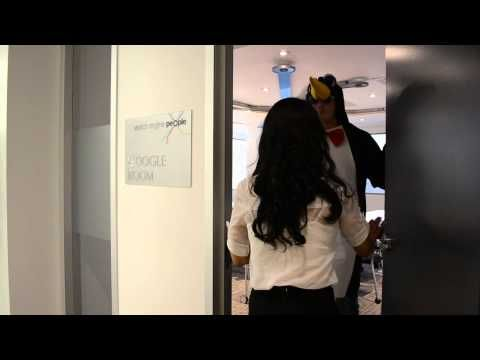 #Google Penguin Visits the SEP Office (and all havoc ensued) - YouTube. #Penguin #SEO #searchengine