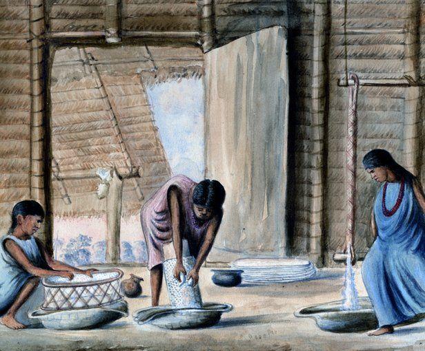 Indias sáliba haciendo casabe de yuca, provincia de Casanare