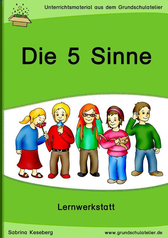 5 Sinne-Werkstatt | Schule | Pinterest | Sinne, Grundschulen und ...