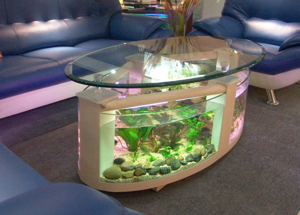 the oval aquarium coffee table is a stylish designed piece of