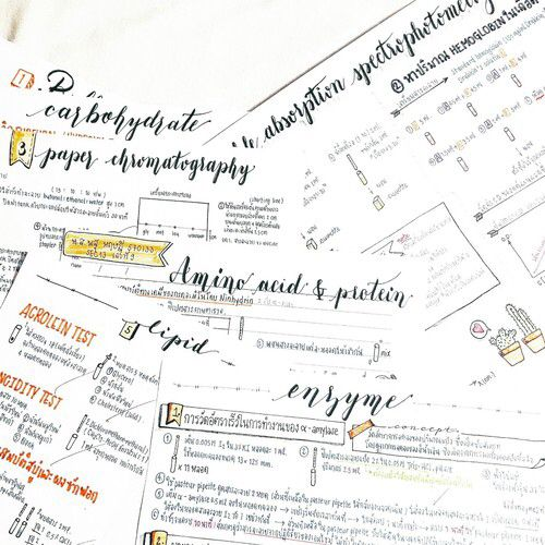 pinterest: bellaxlovee ✧☾ | s t u d y b l r ✓ | Study