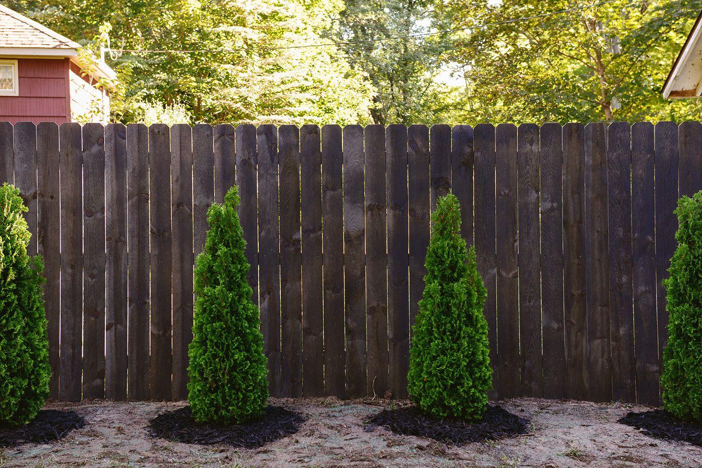 Staining Our Fence Black Staining Wood Fence Backyard Fences Wood Fence